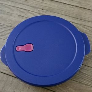 Tupperware  CrystalWave Divided Dish